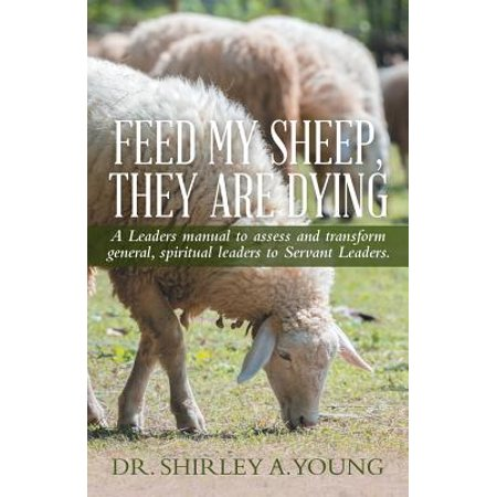 feed my sheep they are dying a leaders manual to assess and transform general spiritual leaders